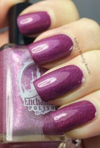 Enchanted-Polish-February-2014-Swatch