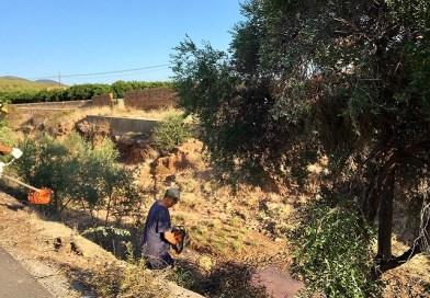 L'Ajuntament contractarà 23 persones aturades del règim agrari