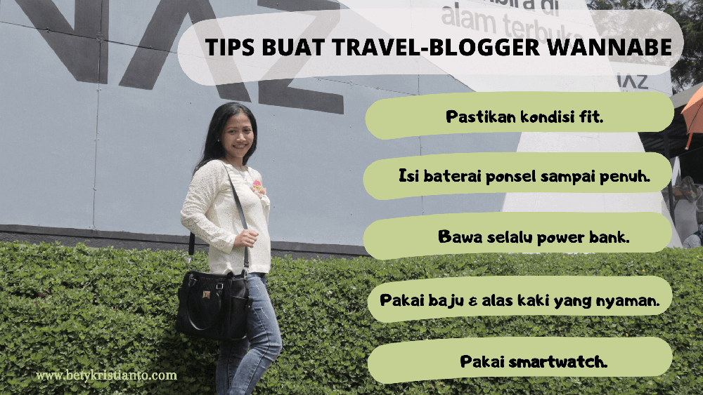 tips travel blogger