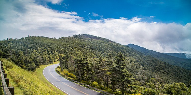 Everything You Need to Know about Mt. Mitchell: A Beginner's Guide