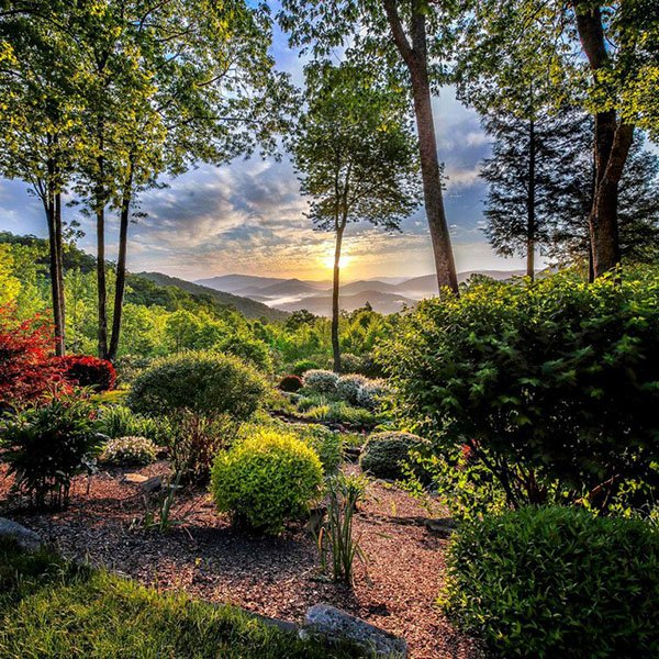Help Us Choose the Best Garden in WNC: Round 4