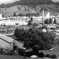 3 Things You Didn't Know about the History of Hazelwood, NC
