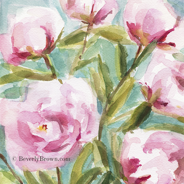 Pink Peony Branches - Watercolor Floral Art Print. From a series of new paintings by Beverly Brown | Framed and canvas wall art for sale at www.beverlybrown.com