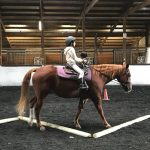 Equestrian Center Beverly Farm