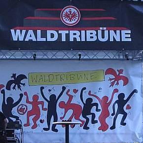 Waldtribüne gegen Dortmund