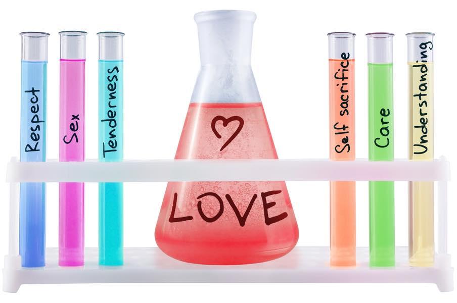 Kærlighedens kemi: Forelskelse, begær og tilknytning