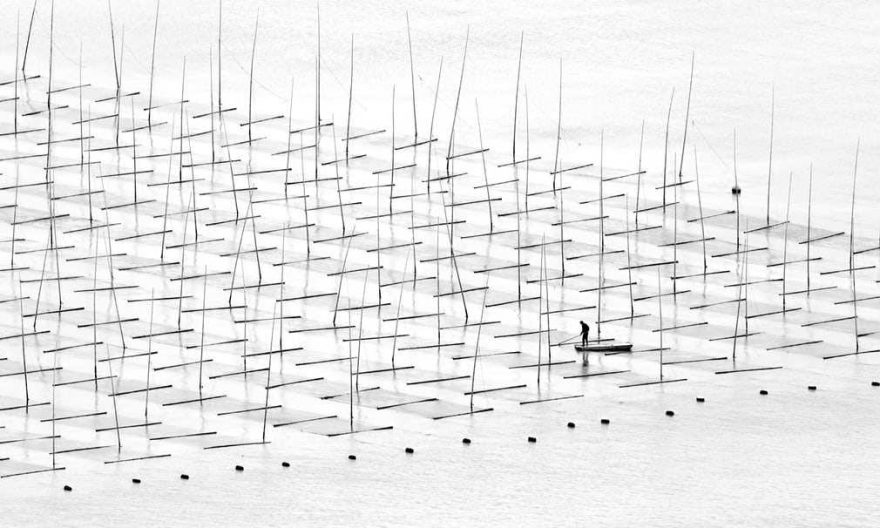 Coastal Geometries Farming The Sea - Fujian #1