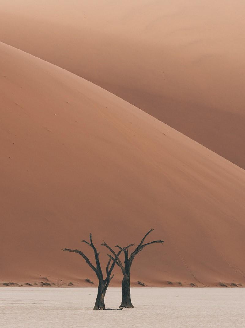 désert de namibie Chris Eyre-Walker Photography