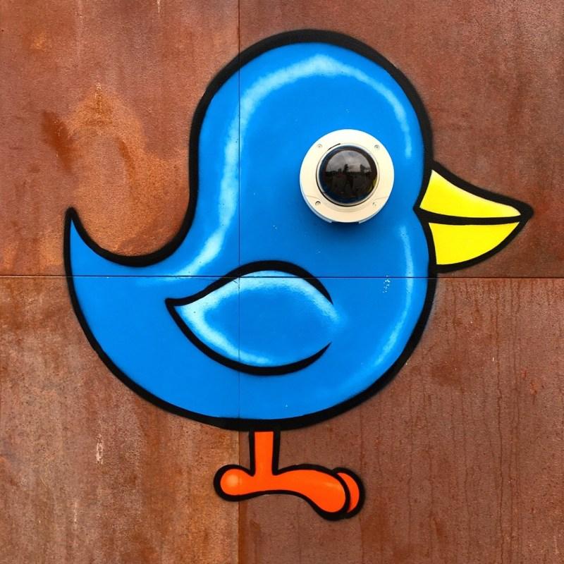"street art, ""birds eye view"""