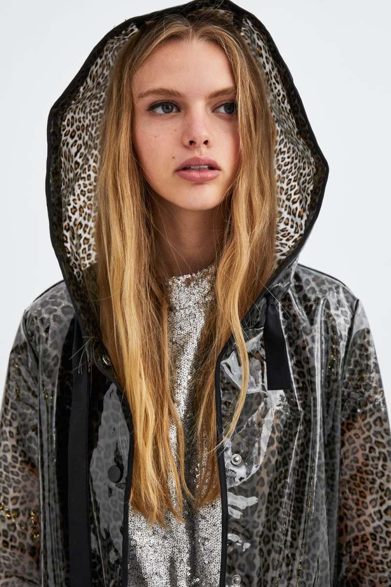 Zara : de pluie et de fauve
