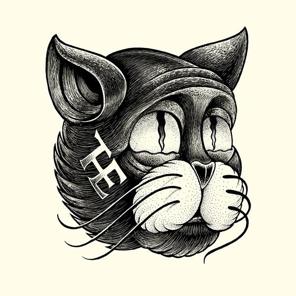 chat dessiné par shane