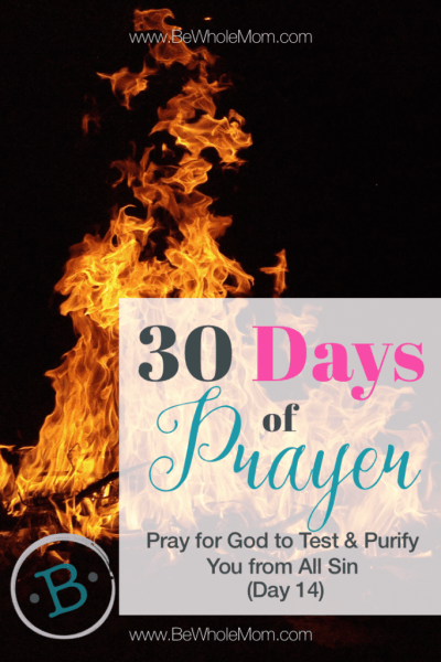 """30 days of prayer"""" Pray for God to test and purify you from all sin (Day 14)"""