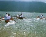 トラディショナルボートレース