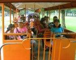 交通機関、観光客、プラムナン寺院、Bewishプランバーンズアー