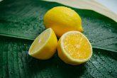 Zitronen auf einem grünen Blatt