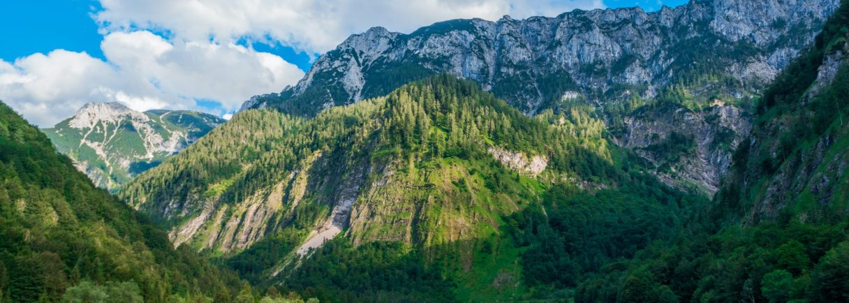 Bergkulisse in Österreich