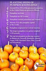 Pumpkin Puree Facts