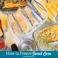 How to freeze sweet corn