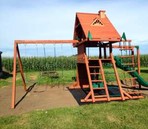 New playset at the new house