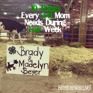 10 things every 4-H Mom should have at the county fair