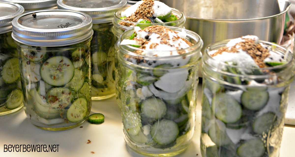 Easy refrigerator garlic, onion and dill pickles can be made easily and ready in 24 hours. These pickles will convert the non-pickle eaters to pickle lovers.