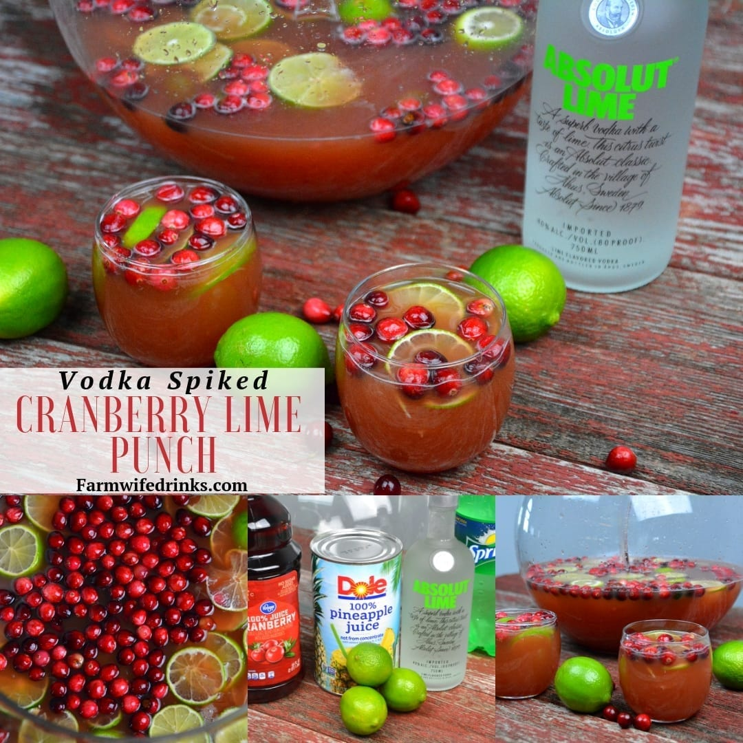 Cranberry Lime Punch