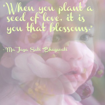 plant a seed of love