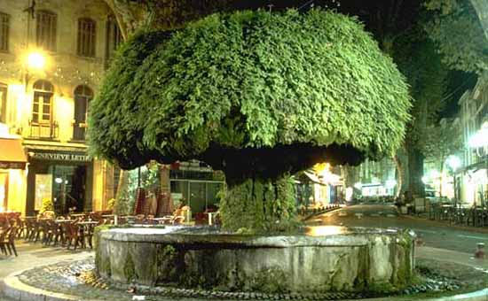 Salon De Provence Visit Photos Travel Info And Hotels