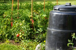 Compost bin in beyondattitude.com