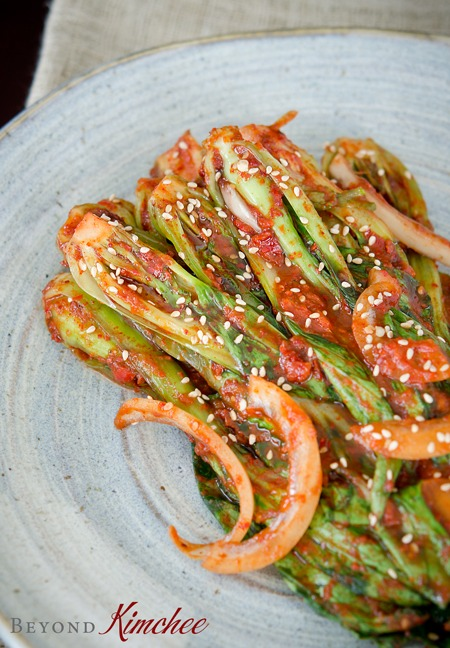 Bok Choy Kimchi