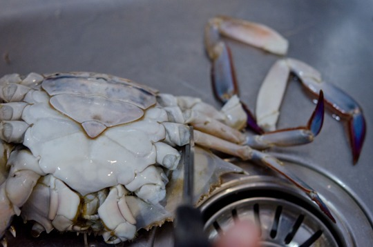 Korean Chili Crab