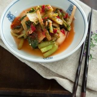 Summer Kimchi (A Secret For the Best Tasting Kimchi)