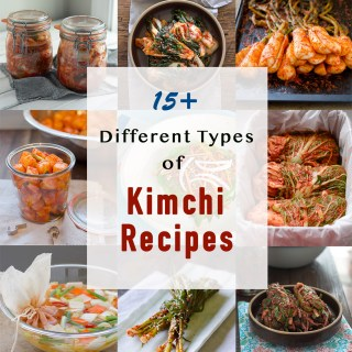 A collection of different types of Korean kimchi recipes