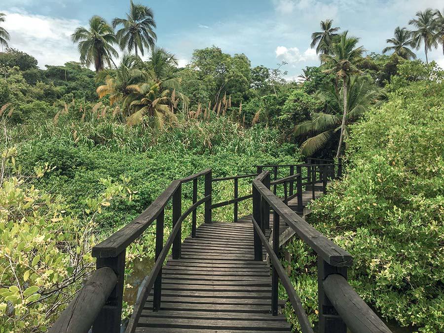 Tayrona-National-Park-Colombia-(10)