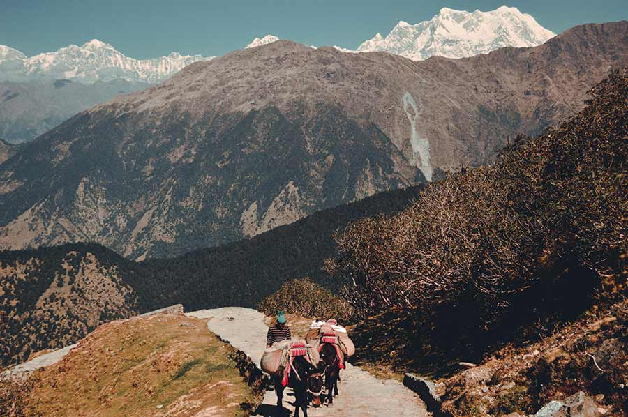 Chopta-Chandrashila-Trek-India-(1)