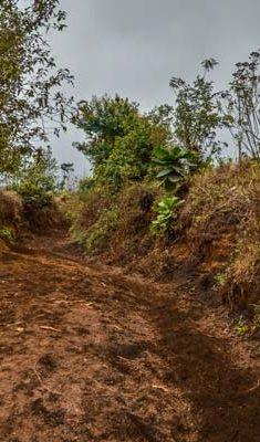 The-Acatenango-hike-beginning