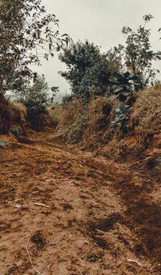 acatenango-volcano-hike-(24)