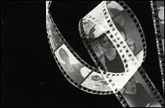 Photogram of a roll of black & white film