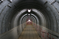 in the Tunnel (Reflection Symmetry)