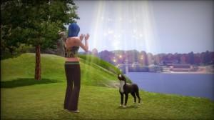 123Kinect Reviews Pets