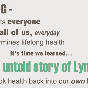 The Untold Story of the Lymphatic System