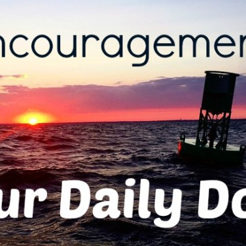 Daily Dose of Encouragement: Rejoice
