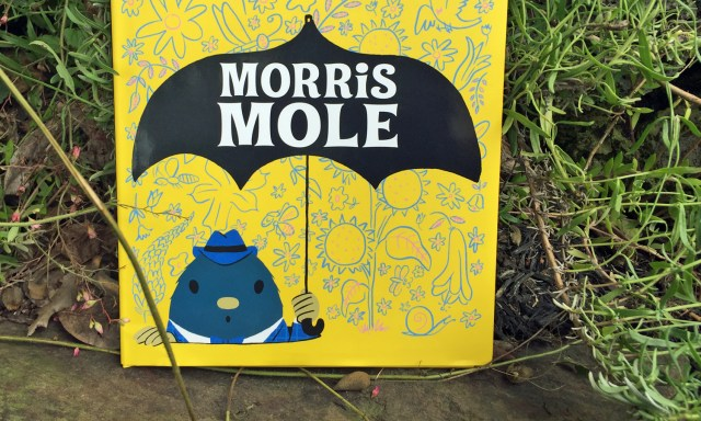 Morris Mole and the other Children's books on repeat in our houses.