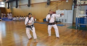 Read more about the article How martial arts Masters teach