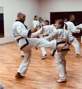 Read more about the article Martial arts for special needs students: Interview with Denise Mullin SBN