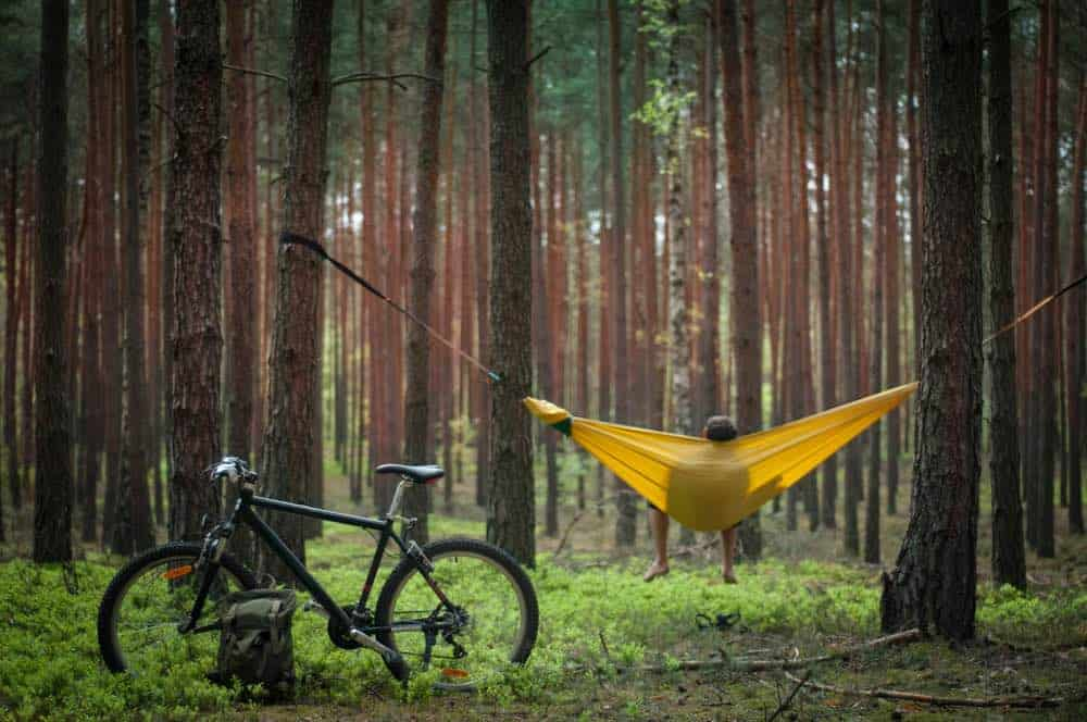 Hanging a Hammock in the Trees