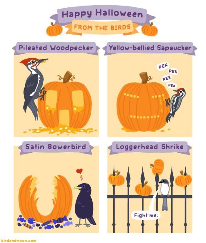 Bird and Moon Halloween Comic