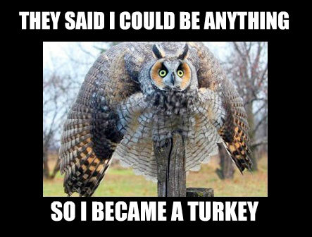 I Became a Turkey