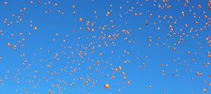 Balloon Release - Photo by Jeffrey Beall