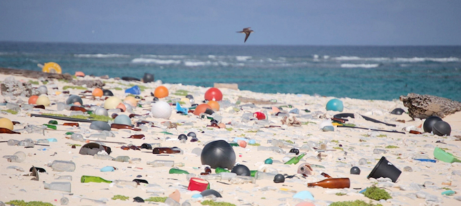 Beach Litter - Photo by Susan White/USFWS